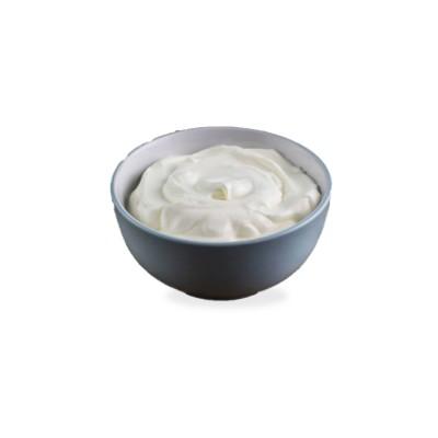 Sweet Dahi Plastic Box- 1 Liter