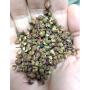 Sichuan Pepper (Timbur) - 200 Gram