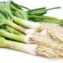 Green or Spring Garlic (हरियो लसुन )- Per Bunch